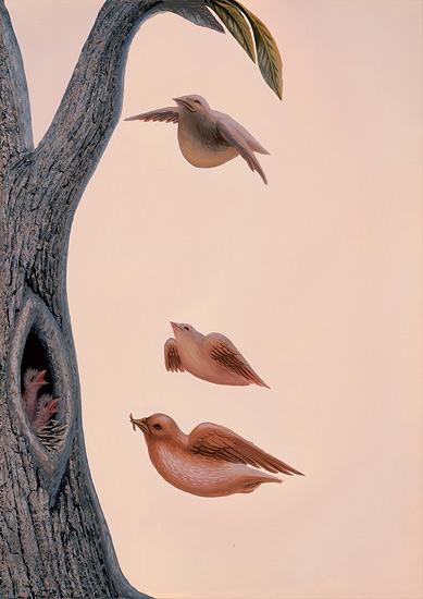 family_of_birds